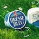 bresse bleu