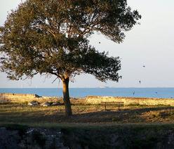 La forteresse d'Oléron