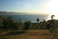 Une plantation en côteaux, surplombant la Méditerranée