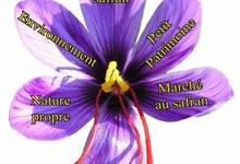 Marché du safran charentais à Champniers