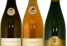 Goutez aux vins des côtes de TOUL