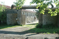 Charentes-Truffes. La souveraine