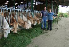 La ferme Dumoulin