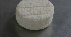 Le paradis du fromage de chèvre !