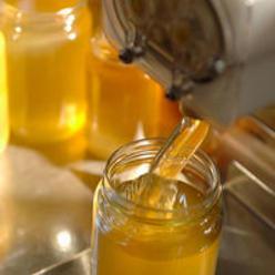 Une transhumance au gré des miellées