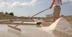 Un producteur de sel accroché à son étoile