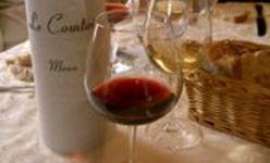 Pour déguster un vin de Bordeaux… aiguisez vos sens !