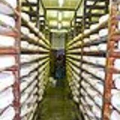 Trnasformation du lait en fromage