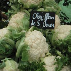 Le chou-fleur de Saint-Omer