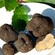 Marché aux truffes et produits du terroir 2010 de Marigny Marmande