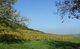 Michel GOUJOT - EARL du BENIMEIX, vins et mirabelles de Lorraine