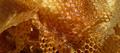 Miel des côteaux de Bourg, Amblard