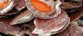 Noix de coquilles Saint-Jacques rôties, jus de châtaignes, garniture automnale
