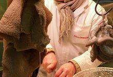 Fraise de veau à la Lyonnaise
