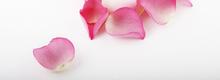 Niflettes au confit de pétales de roses