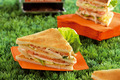 le club sandwich Lucullus Succulus