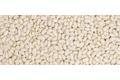 Le haricot de Soissons sec en carton de 5 kg