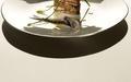 Club Sandwich de Sardine au Pain de Seigle