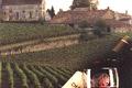 Vignobles Pierre-Emmanuel Janoueix