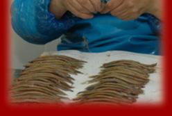 Association de promotion et de défense de l'anchois de Collioure
