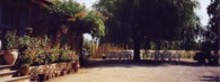 LES GRANDS CAMPS