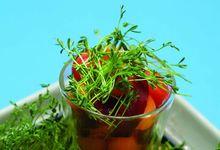 Salade de melon et de pastèque au magret fumé et aux lentilles germées