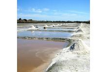 Le sel marin de l'ile de ré