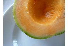 Le melon de nérac