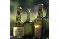 La truite au vin jaune