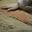 Salaison au Sel de Guérande