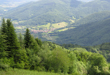 vallée de l'arbas