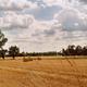 paysage du Bergeracois