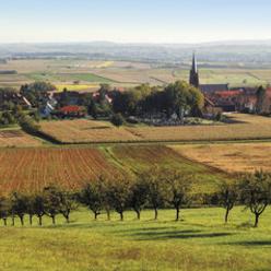Le pays de Hanau