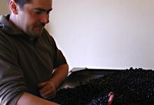 La Maison de l'huile d'olive, Patrick Bartoli