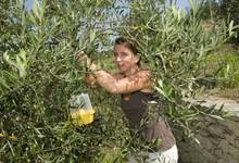 Sandrine Marfisi, l'aliva marina