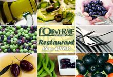 L'oliveraie, chez Grec
