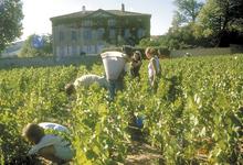 Domaine de Trémont, château des Jean-Loron