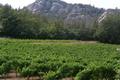 Domaine Dupuy de Lôme, sas les Gres