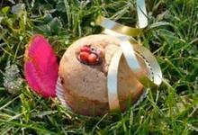 Muffins à la Crème de Marrons Jours Heureux