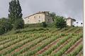 Domaine du Castellat