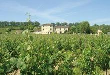 Vignobles Pierre Sadoux, chateau Petite Borie