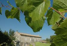 Château l'Argentier