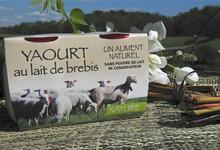 Les yaourts fermiers au lait entier sans conservateur ni poudre de lait
