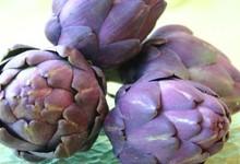 artichaud violet du Roussillon