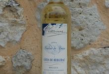 Côtes de Bergerac Moelleux 2009 Cuvée FLORIANE 100% sémillon