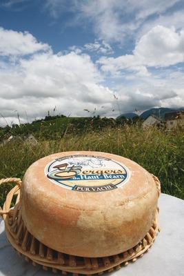Le Fromage pur vache fermier des Pyrénées