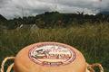 1/2 fromage brebis fermier AOC OSSAU IRATY