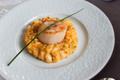 Risotto crémeux de potiron et fromage « l'Ortolan »,  noix de Saint-Jacques poêlées à l'huile de noisette