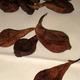 poires tapées