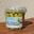 Olives primeur - Lucques du Lanquedoc